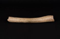Neanderthals Interbred with Homo sapiens Very Early in Asia