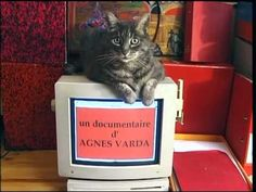 (2) HOMMAGE à ZGOUGOU // Agnès Varda - YouTube Agnes Varda, Animation, Make It Yourself, Movie, Image, Documentary, Film Movie, Movies, Animation Movies