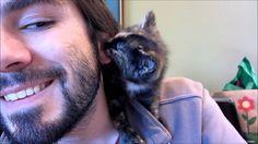 ! itty bitty, tortoiseshell kitty + fusses & kisses + lovely dude = WIN !