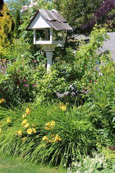 Fishtail Cottage: Fishtail Cottage Garden 6/8/15