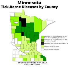 Lyme Disease Has Grown Steadily In Mn Over The Past 7 Years At A 6