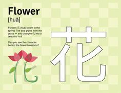 """See how the Mandarin character for """"flower"""" is formed and practice tracing it with this preschool worksheet from learnwithmiaomiao.com #Miaomiao #Mandarin #spring #Chinese #learn #language #worksheet #preschool #kids #bilingual #printable"""