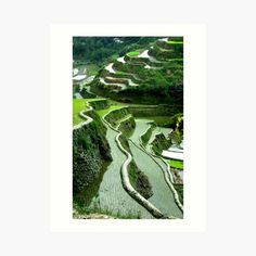 Volcano World, Large Prints, Framed Prints, Rice Terraces, Thing 1, Plant Leaves, Art Print, The Incredibles, Gallery