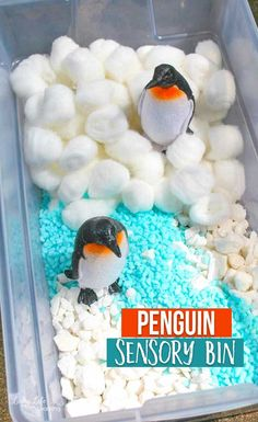 Explore Antarctica with this fun Penguin Sensory Bin. Get these penguins swimming in the water and playing in the snow as penguins love to do. Invite your kids to pretend play with these penguins and provide tons of imaginative play for your kids. Kindergarten Science Activities, Animal Activities For Kids, Winter Activities For Kids, Fun Crafts For Kids, Sensory Activities, Sensory Play, Preschool Activities, Sensory Boxes, Sensory Table