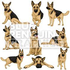 Cartoon Dog, Cartoon Drawings, German Shepherd Painting, Dog Vector, Vector Clipart, Puppy Drawing, German Shepherd Puppies, German Shepherds, Dog Artwork
