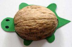 Fabriquer une tortue coquille de noix - Tête à modeler