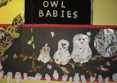 A super Owl Babies classroom display photo contribution. Great ideas for your classroom! Class Displays, Classroom Displays, Photo Displays, Eyfs Classroom, Owl Activities, Autumn Activities, Owl Babies, Baby Owls, Christmas Owls