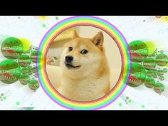 Agar.io // PLAYING WITH HACKER DOGE // Trolling people in AGAR.IO (Funny momentss) - http://music.tronnixx.com/uncategorized/agar-io-playing-with-hacker-doge-trolling-people-in-agar-io-funny-momentss/ - On Amazon: http://www.amazon.com/dp/B015MQEF2K