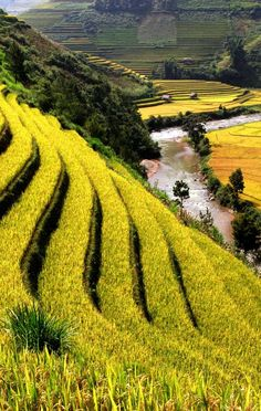 Threeland Travel: Vietnam tour package & tailor-made holiday in Vietnam, Cambodia, Laos, Myanmar Places Around The World, Oh The Places You'll Go, Places To Travel, Places To Visit, Around The Worlds, Laos, Vietnam Tour, Beautiful World, Beautiful Places