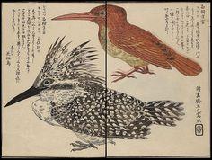 Matsuura Takeshiro - Ishikari nisshi (1860) by peacay, via Flickr