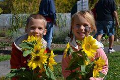 Sunflower Festival Cincinnati, OH #Kids #Events