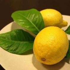 Tamara's Tip :  Lemons are high in Vitamin C, Vitamin B, Phosphorous, proteins, and carbohydrates. The various health benefits of lemons include the treatment of throat infections, indigestion, constipation, dental problems, fever, hair care, skin care, internal bleeding, treating kidney stones, rheumatism, burns, overweight, respiratory disorders, cholera and high blood pressure. Lemons help to strengthen your immune system and (read the comment for more)