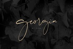 Georgia Script by vuuuds on @creativemarket