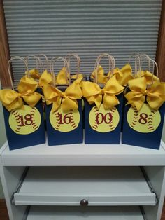 Coach Videos Challenges Printing Education For Kids Printer Softball Goodie Bags, Softball Treats, Softball Coach Gifts, Cheerleading Gifts, Basketball Gifts, Sports Gifts, Baseball Bags, Baseball Party, Soccer Party