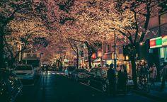 Tokyo di notte.