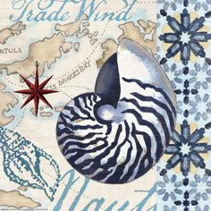 This canvas wall art is reminiscent of old European tiles. A big nautilus and other shells, script, oceanic maps and a blue medallion border combine to create a nostalgic look. Deco Marine, Decoupage Printables, Trade Wind, Nautical Art, Coastal Art, Decoupage Paper, Illustrations, New Blue, Print Store