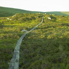 Wicklow Gap, County Wicklow, Ireland