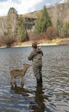 Little fishing companion