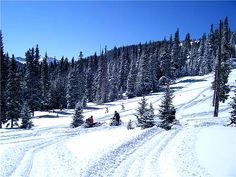 Went snow mobiling near Pegosa Springs Co.  - Wolf Creek