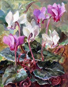 Cyclamen | Mill House Fine Art – Publishers of Anne Cotterill Flower Art