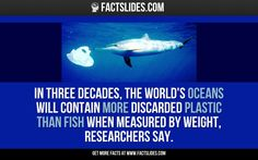 In three decades, the world's oceans will contain more discarded plastic than fish when measured by weight, researchers say.