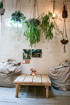 To fill blank space, suspend your plants in the air and hang them! Looks like its raining plants!