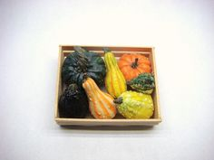 Set of 7 Dollhouse Scale Squash and Gourds in a by AnAlaskanDreams