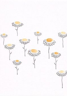 Wallpapers daisy flower print pattern colours