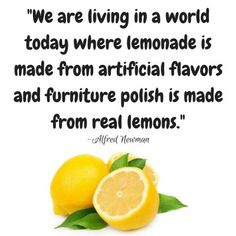 """I'm angry that wholesome """"real"""" food is more inaccessible than processed crap. I'm angry sugary cereals are promoted by companies. Alfred Newman, Lemonade, Real Food Recipes, You And I, Dairy Free, Fruit, Cast Iron, Cookie, Blog"""