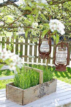 Lanterns and plants in a wooden basket. Garden Gates, Herb Garden, Amazing Gardens, Beautiful Gardens, Plantation, Dream Garden, Garden Projects, Garden Inspiration, Container Gardening