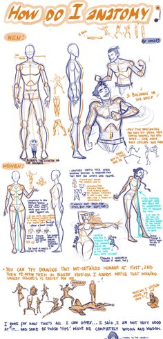 Viria13 how to draw anatomy