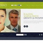 Looking back: Flash Website Design Trends - 2010