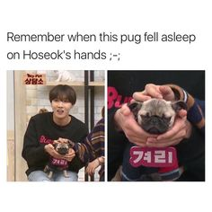 So cute!!!! Hobi, not the dog. Just kidding, the doggie's cute too. But Hobi is more cute <<< hobi don't know what to do
