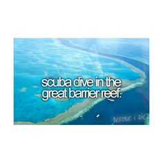 Actually, for now I just want to learn how to scuba dive, period. But this would be an awesome place to do it.