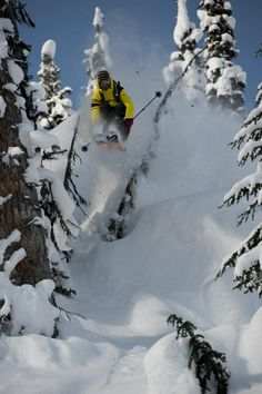 Andy Mahre blasting through the trees in the #Monashees with CMH Heli and Warren Miller last year.