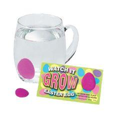 "1"" Set of 12 Watch It Grow Easter Eggs"