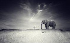 Elephant Black And White Wallpapers For Desktop Wallpaper 1280 x 800 px 307.69 KB white iphone tumblr black tribal art baby
