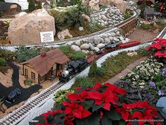 Missouri Botanical Garden. A display of miniature trains in the garden before Christmas time.