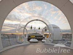 bubbletree_bubblestripe_1