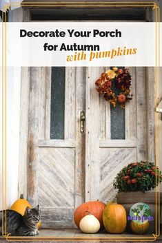 Pumpkins are a classic and inexpensive way to decorate your front porch for Autumn. Get inspired for different ways to welcome visitors to your home this Fall. #porchdecoration #autumndecoration #fallporchdecor #autumnporchdecor #outdoordecorating Autumn Decorating, Porch Decorating, Fall Crafts, Holiday Crafts, Holiday Decor, Pumpkin Display, Fun Fall Activities, Fall Halloween, Halloween Ideas