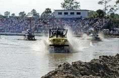 Swamp Buggy Races Naples News
