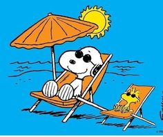 Peanuts Snoopy, Snoopy Und Woodstock, Peanuts Cartoon, Woodstock Bird, Peanuts Comics, Peanuts Characters, Cartoon Characters, Charlie Brown Und Snoopy, Snoopy Pictures