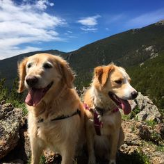 Latest Blog Lori Smith Estes Park Real Estate Agent Enjoy Mountain Lifestyle With
