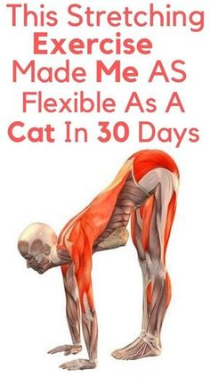 Fitness Workouts, Yoga Fitness, Senior Fitness, Physical Fitness, Fitness Diet, At Home Workouts, Health Fitness, Yoga Workouts, Fitness Games