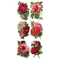 1 Sheet of Stickers Mixed Camelia Bouquets ~ Trade Card Style