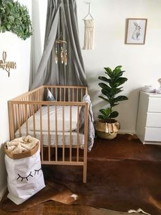 nursery / neutral / canopy / cowhide rug / gender neutral nursery / interiors / design / fiddle leaf fig tree