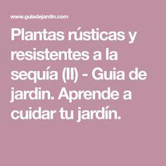 Plantas rústicas y resistentes a la sequía (II) - Guia de jardin. Aprende a cuidar tu jardín.