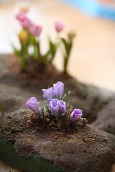 how to: crocus, This is in Finnish but between the good pictures and interesting translation by Google you can get the idea of how to make the flowers