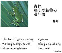 Nature Haiku