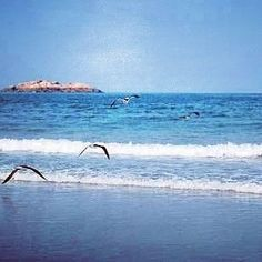 Gaoluo beach in Xiapu county. #travel #traveling #TagsForLikes #TFLers #vacation #visiting #instatravel #instago #instagood #trip #holiday #photooftheday #fun #travelling #tourism #tourist #instapassport #instatraveling #mytravelgram #travelgram #travelingram #igtravel